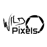 Wild Pixels Blog
